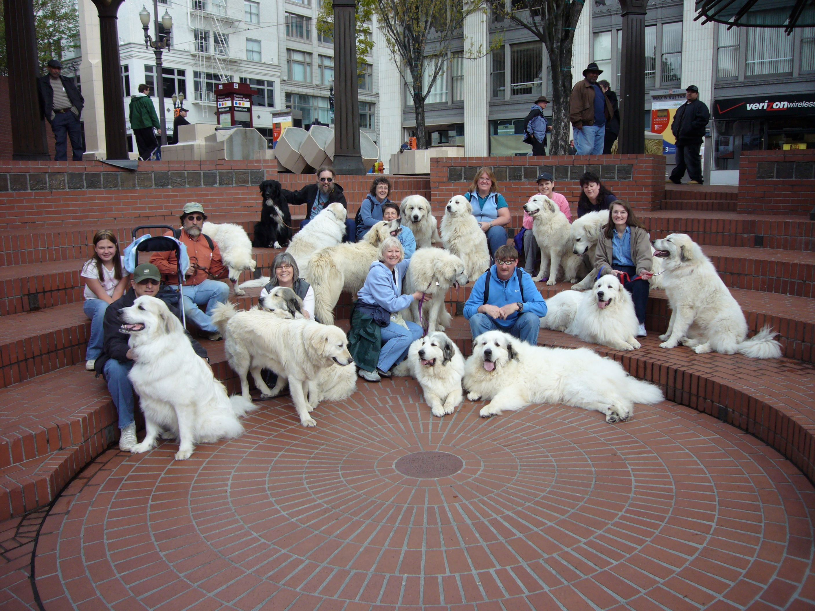 2007 – Columbia Cascade Great Pyrenees Club